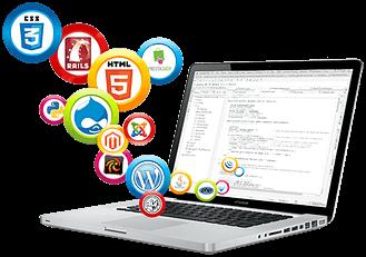 Özel Web Tasarım Projesi